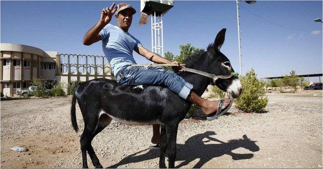 Omar Salim Gocha - în drup spre Sirte